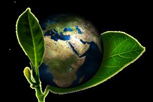 Miljövänliga profilprodukter med tryck - Profilprodukter24